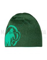 Gorro MAMMUT LOGO light emerald woods