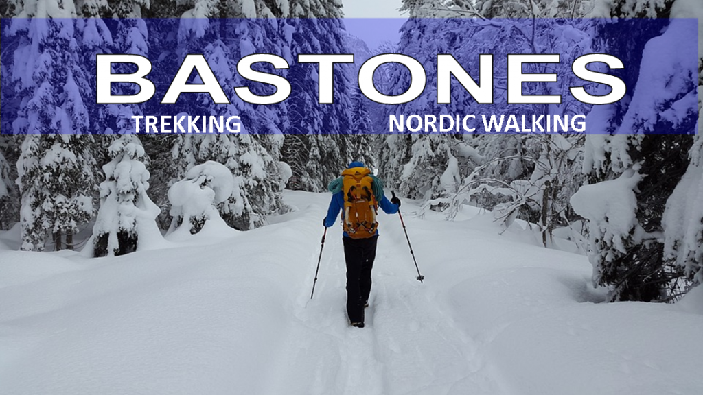 BASTONES NORDIC WALKING